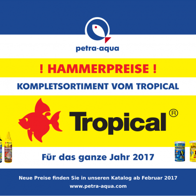 hammerpreise Tropical